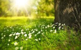 Confira dicas para aproveitar o final do verão com mais saúde
