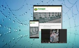 Site como ferramenta de comunicação e interação
